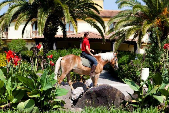 horse sharing sardegna